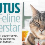 My Weekly Brutus the Morrison s cat-page-001