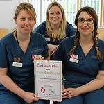 Lumbry Park Veterinary Specialists with Gold Standard certificate from ICC