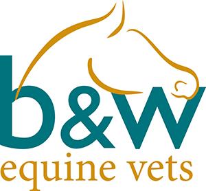 B&W Equine Vets logo