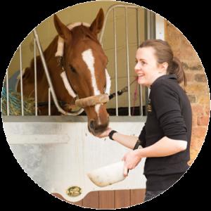 Equine nurse feeding horse