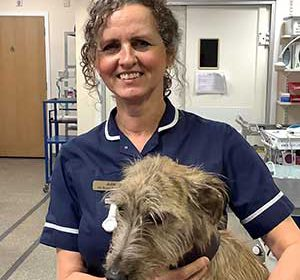 Julie Rutter from Marske Vets